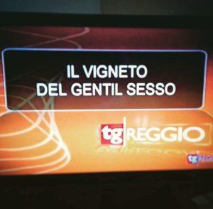 FerrettiVini ad Agri7 del 17/09/2016, Telereggio